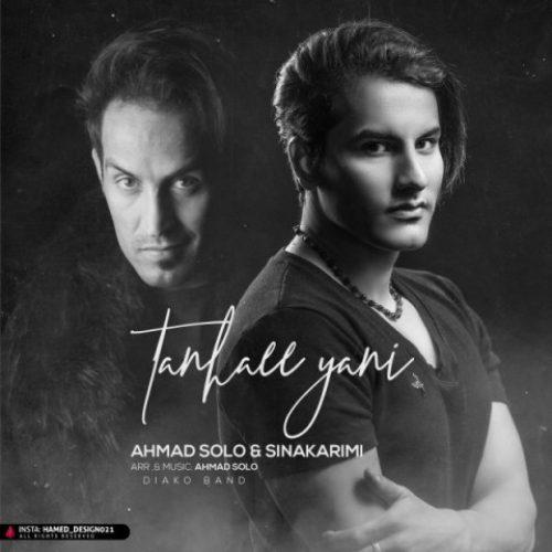دانلود آهنگ جدید تنهایی یعنی از احمد سلو