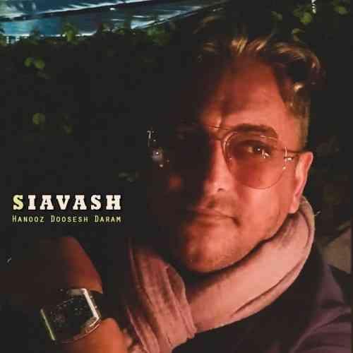 دانلود آهنگ جدید هنوز دوست دارم از سیاوش شمس
