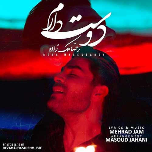 دانلود آهنگ جدید دوست دارم از رضا ملک زاده