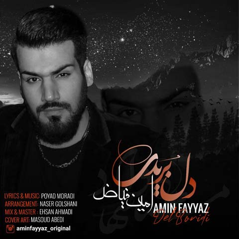 دانلود آهنگ جدید دل بریدی از امین فیاض